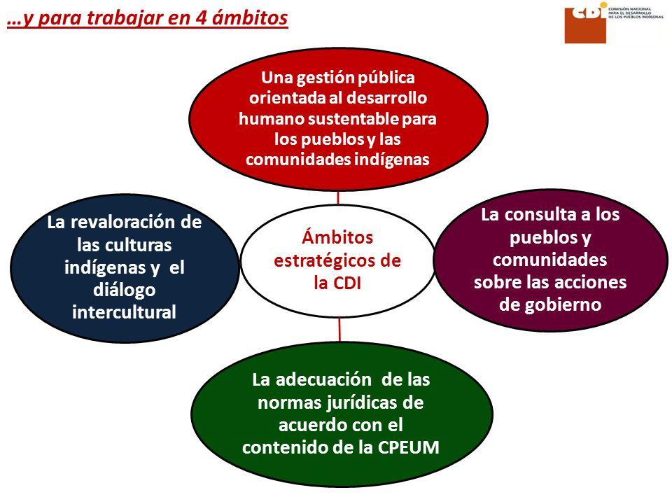 Ámbitos estratégicos de la CDI La revaloración de las culturas indígenas y el diálogo intercultural La consulta a los pueblos y comunidades sobre las