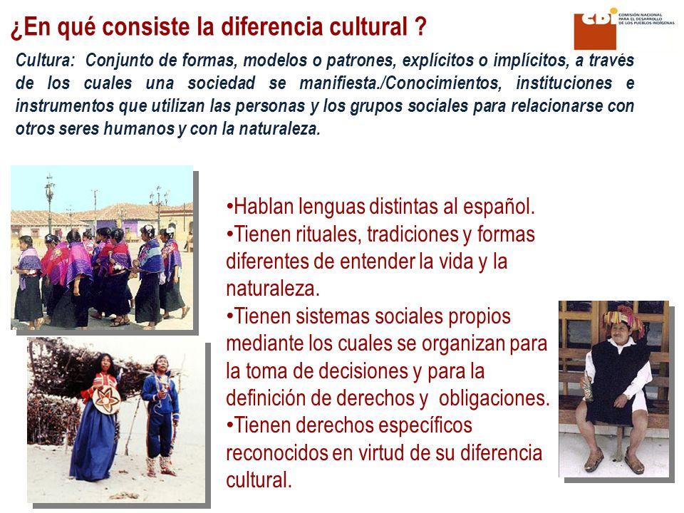 ¿En qué consiste la diferencia cultural ? Hablan lenguas distintas al español. Tienen rituales, tradiciones y formas diferentes de entender la vida y
