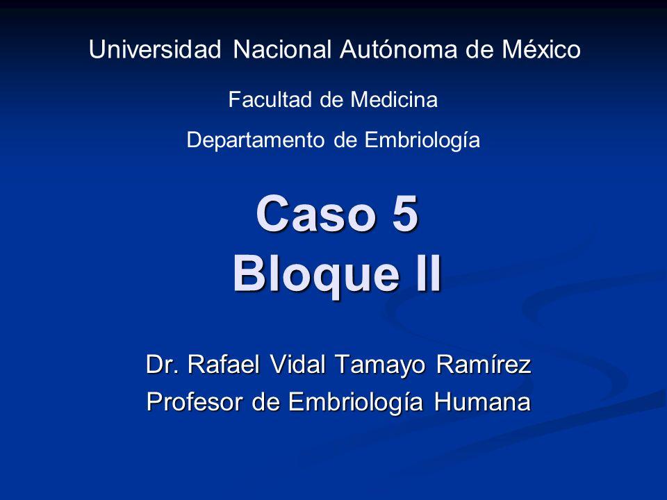 Caso 5 Bloque II Dr. Rafael Vidal Tamayo Ramírez Profesor de Embriología Humana Universidad Nacional Autónoma de México Facultad de Medicina Departame
