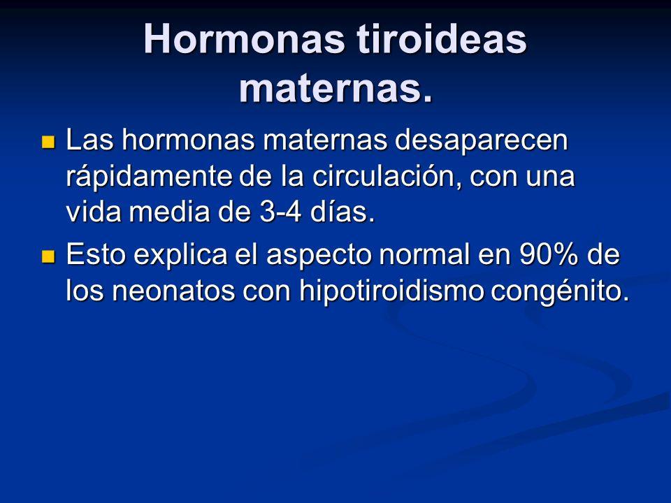 Hormonas tiroideas maternas. Las hormonas maternas desaparecen rápidamente de la circulación, con una vida media de 3-4 días. Las hormonas maternas de