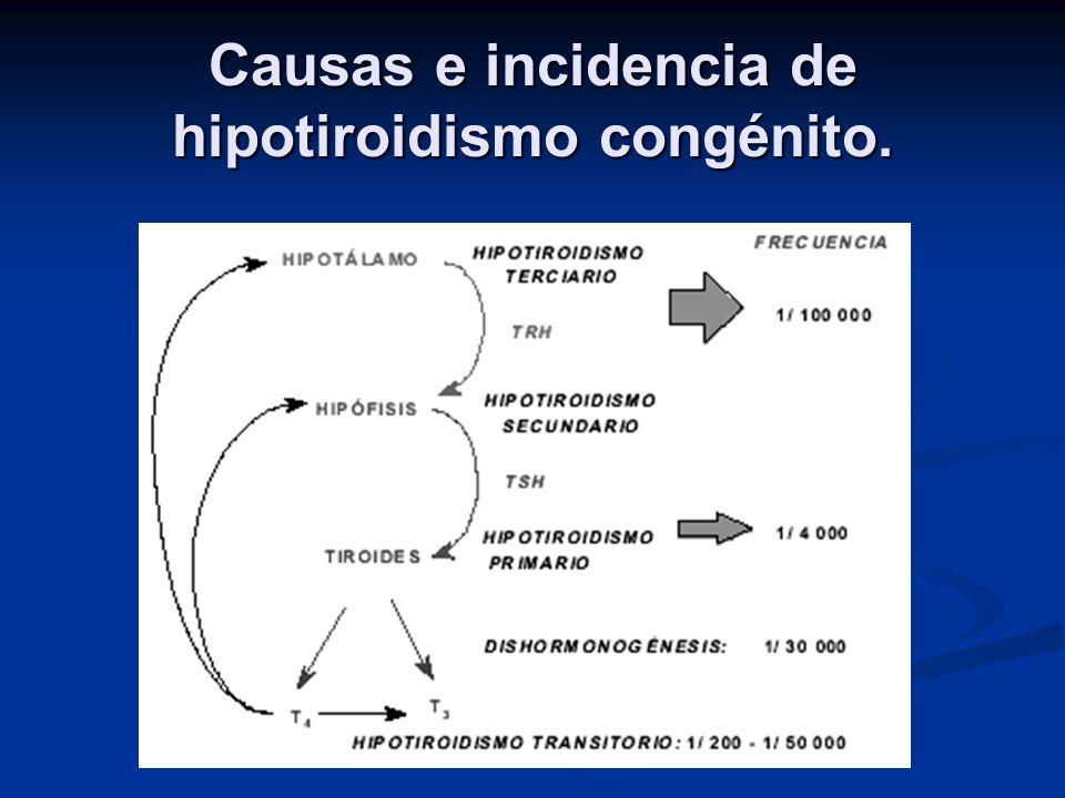 Causas e incidencia de hipotiroidismo congénito.