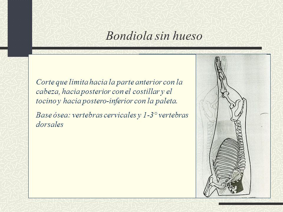 Bondiola sin hueso Corte que limita hacia la parte anterior con la cabeza, hacia posterior con el costillar y el tocino y hacia postero-inferior con l
