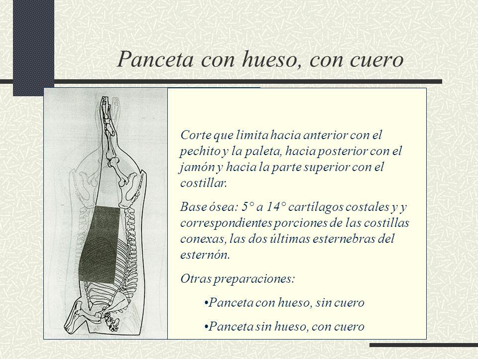 Panceta con hueso, con cuero Corte que limita hacia anterior con el pechito y la paleta, hacia posterior con el jamón y hacia la parte superior con el