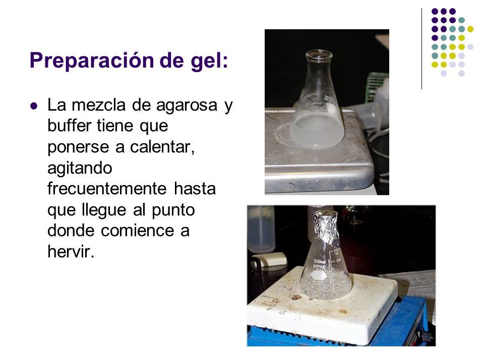 Preparación de gel: La mezcla de agarosa y buffer tiene que ponerse a calentar, agitando frecuentemente hasta que llegue al punto donde comience a hervir.