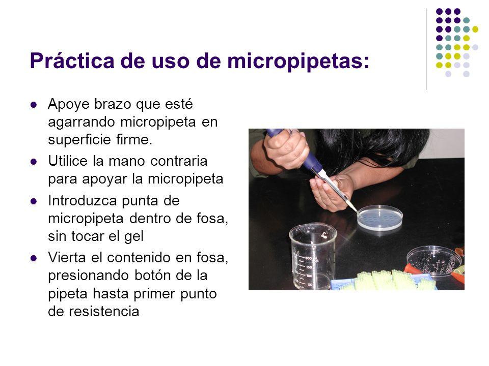 Práctica de uso de micropipetas: Apoye brazo que esté agarrando micropipeta en superficie firme.