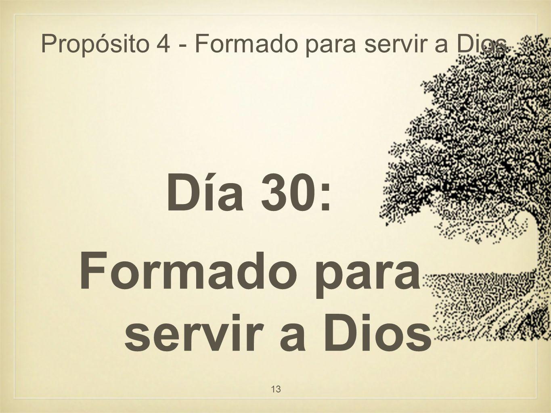 Propósito 4 - Formado para servir a Dios Día 30: Formado para servir a Dios 13