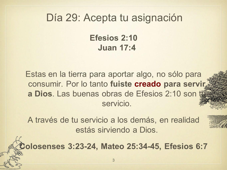 Día 33: Cómo actúan los verdaderos siervos Los siervos verdaderos mantienen un perfil bajo 1ª Pedro 5:5 Los siervos no se dan autobombo, no se promocionan, no quieren llamar la atención, no buscan que se les reconozca.