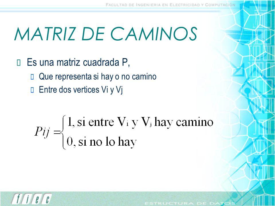 MATRIZ DE CAMINOS Es una matriz cuadrada P, Que representa si hay o no camino Entre dos vertices Vi y Vj