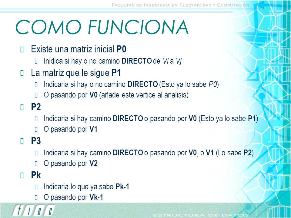 COMO FUNCIONA Existe una matriz inicial P0 Inidica si hay o no camino DIRECTO de Vi a Vj La matriz que le sigue P1 Indicaria si hay o no camino DIRECT
