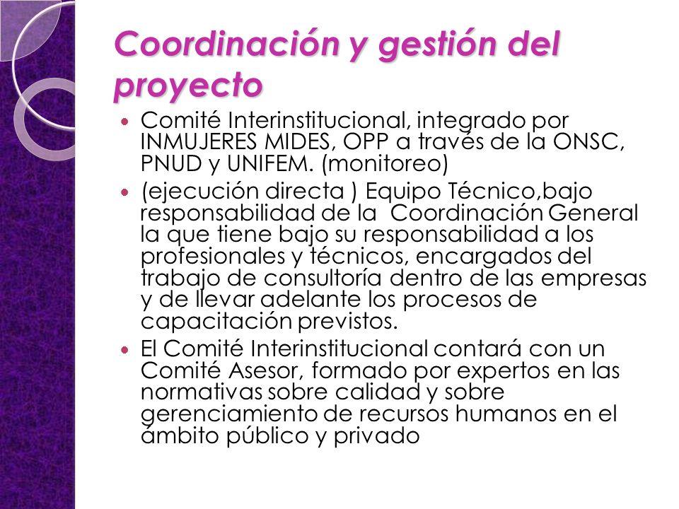 Coordinación y gestión del proyecto Comité Interinstitucional, integrado por INMUJERES MIDES, OPP a través de la ONSC, PNUD y UNIFEM.