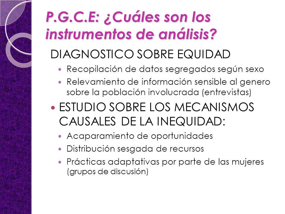 P.G.C.E: ¿Cuáles son los instrumentos de análisis? DIAGNOSTICO SOBRE EQUIDAD Recopilación de datos segregados según sexo Relevamiento de información s
