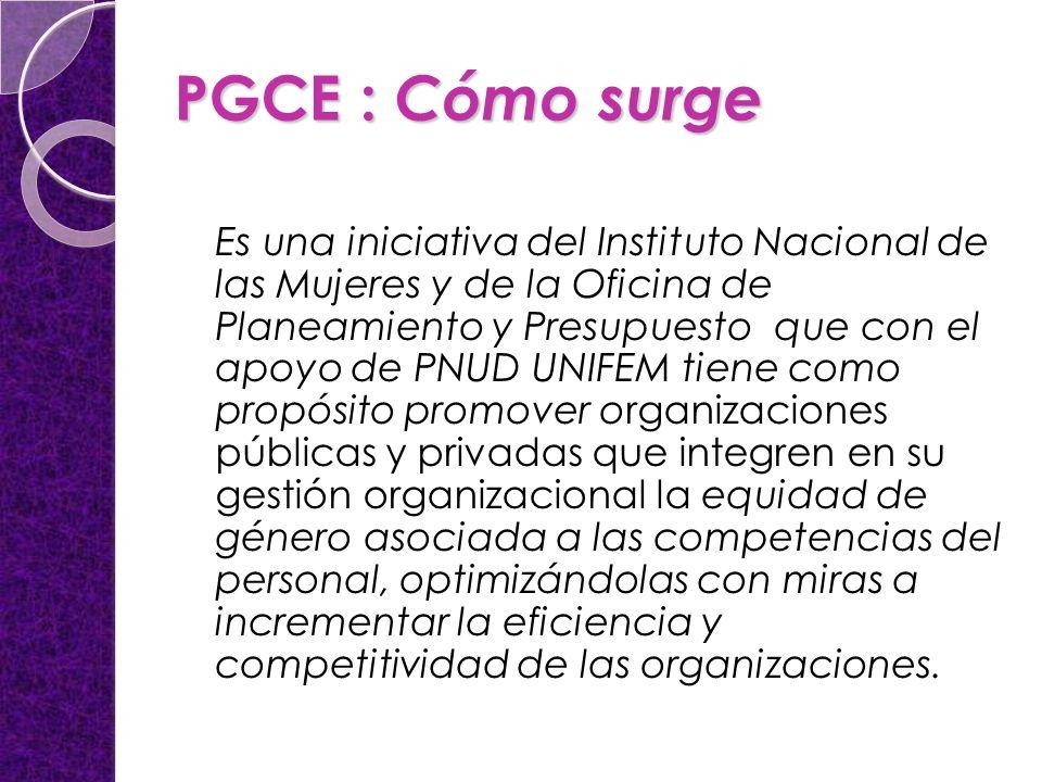 PGCE : Cómo surge Es una iniciativa del Instituto Nacional de las Mujeres y de la Oficina de Planeamiento y Presupuesto que con el apoyo de PNUD UNIFE