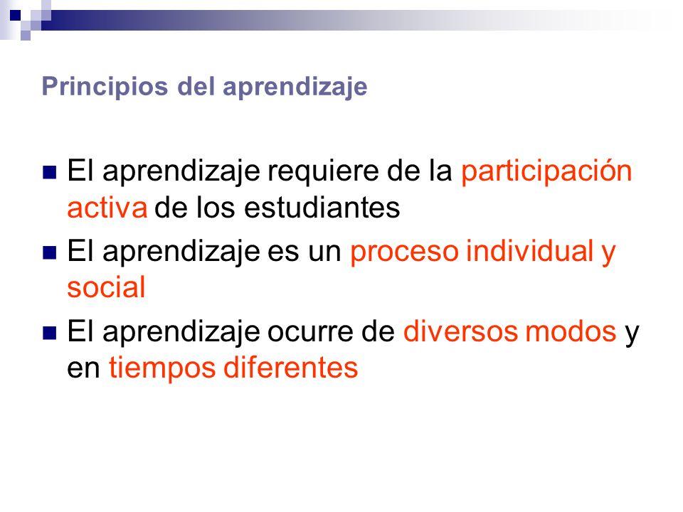 Principios del aprendizaje El aprendizaje requiere de la participación activa de los estudiantes El aprendizaje es un proceso individual y social El aprendizaje ocurre de diversos modos y en tiempos diferentes