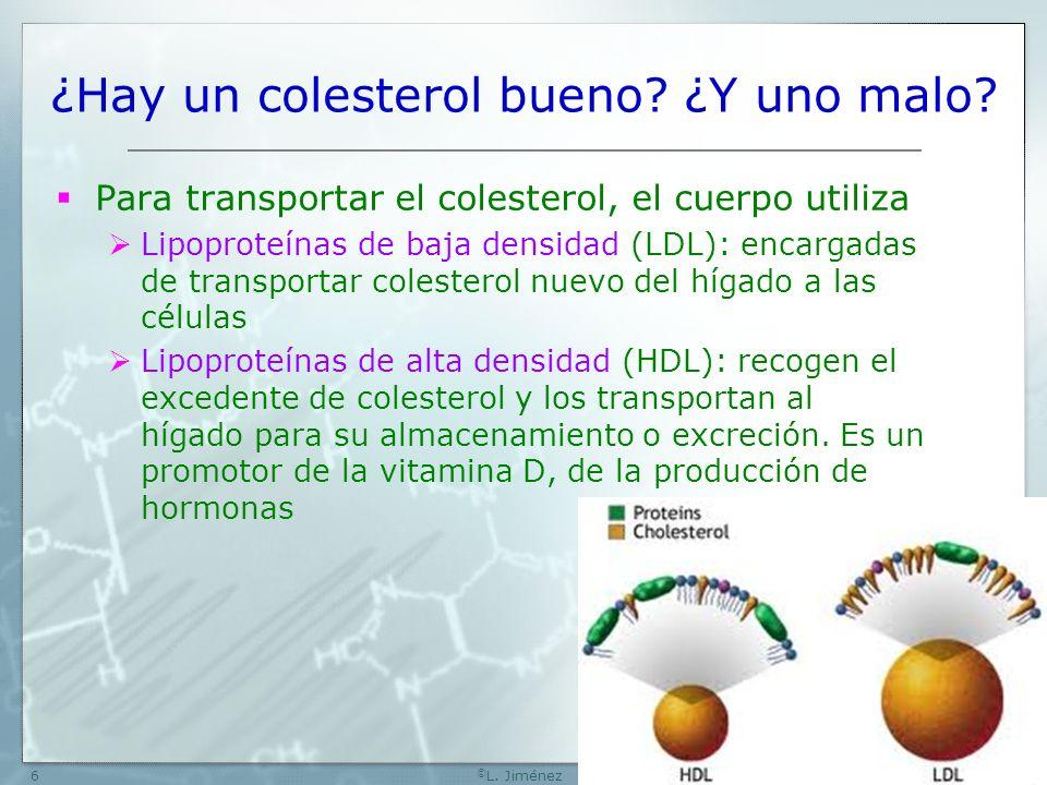 W[74] © L.Jiménez7 ¿Hay un colesterol malo.