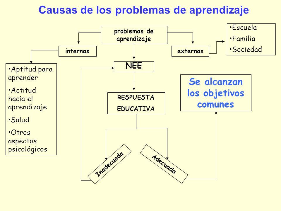 Causas de los problemas de aprendizaje internasexternas problemas de aprendizaje NEE RESPUESTA EDUCATIVA Inadecuada Adecuada Se alcanzan los objetivos