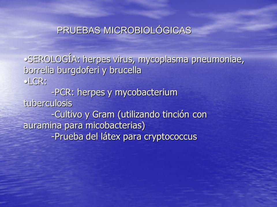 SEROLOGÍA: herpes virus, mycoplasma pneumoniae, borrelia burgdoferi y brucella LCR: -PCR: herpes y mycobacterium tuberculosis -Cultivo y Gram (utiliza