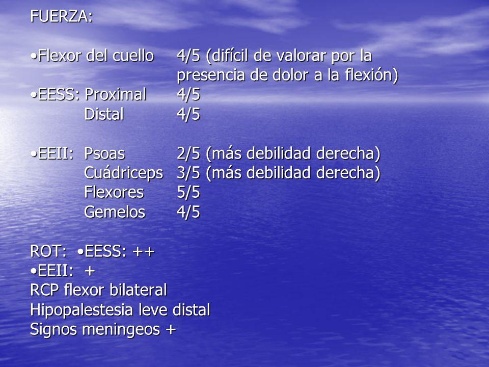 FUERZA: Flexor del cuello4/5 (difícil de valorar por la presencia de dolor a la flexión) EESS: Proximal4/5 Distal 4/5 EEII: Psoas2/5 (más debilidad de