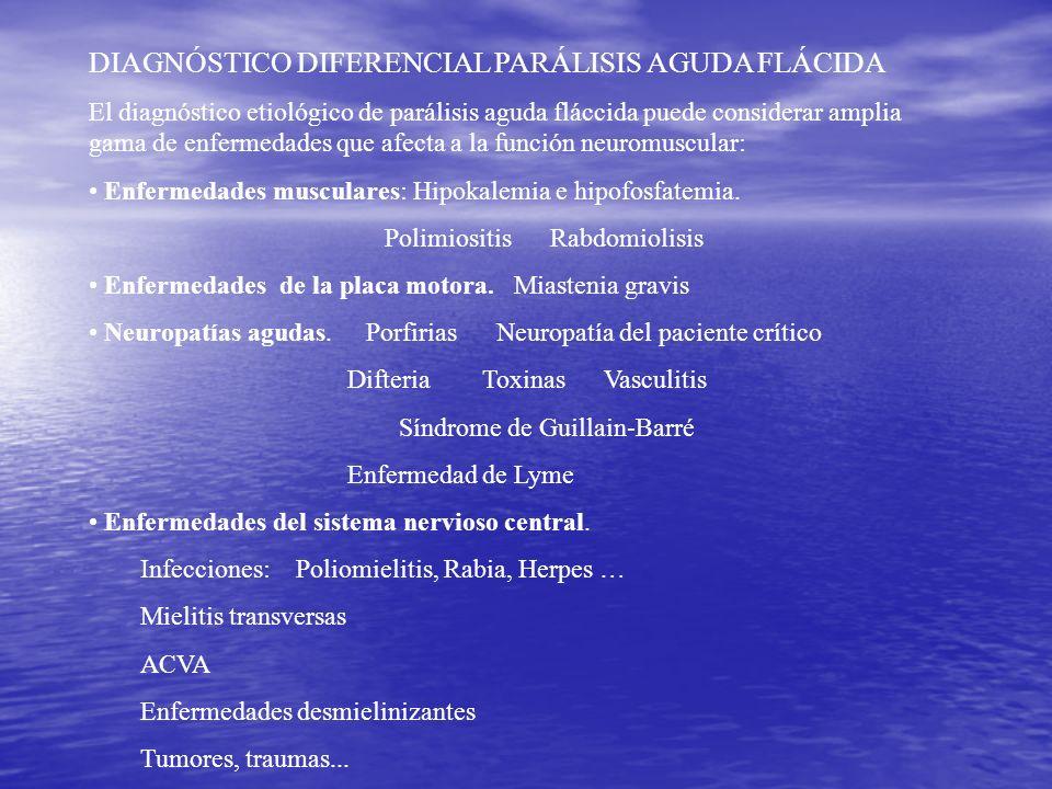 DIAGNÓSTICO DIFERENCIAL PARÁLISIS AGUDA FLÁCIDA El diagnóstico etiológico de parálisis aguda fláccida puede considerar amplia gama de enfermedades que