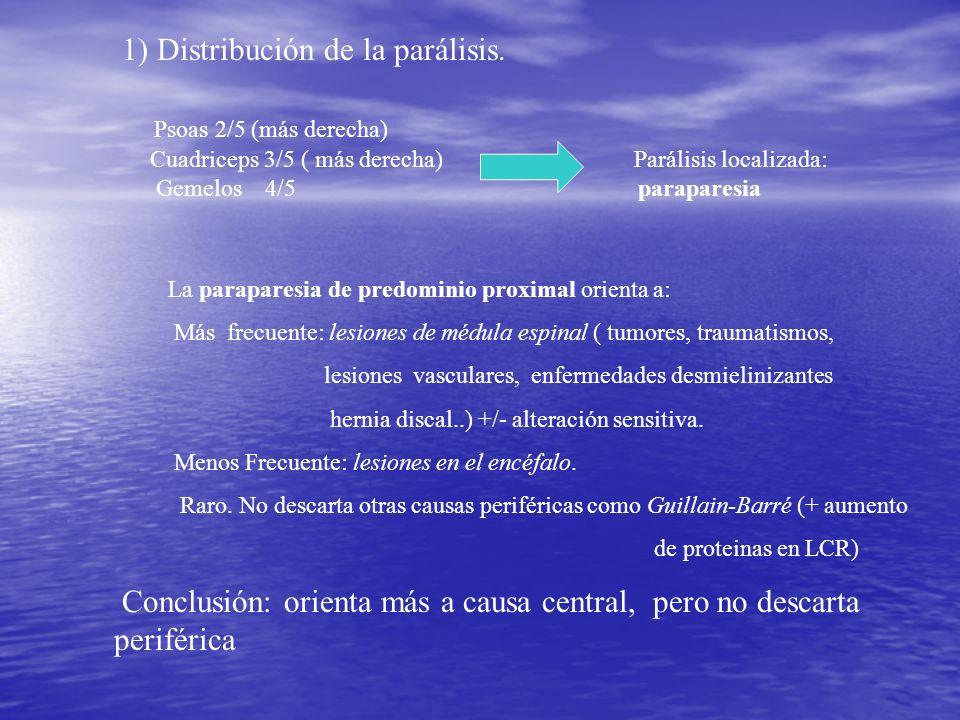 1) Distribución de la parálisis. Psoas 2/5 (más derecha) Cuadriceps 3/5 ( más derecha) Parálisis localizada: Gemelos 4/5 paraparesia La paraparesia de