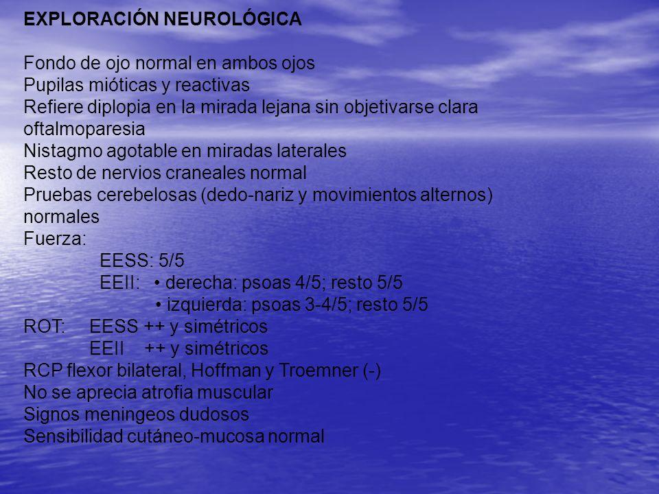 PRUEBAS COMPLEMENTARIASHemograma normal Leucocitos Leucocitos –Segmentados –Linfocitos –Monocitos –Eosinófilos –Basófilos Hematíes Hematíes Hemoglobina Hemoglobina Hematocrito Hematocrito VCM VCM Plaquetas Plaquetas 6,8x10 3 / μl (4,8-10,8) 71.2% (42.0-75.0) 22.3%(20.0-51.0) 5.4%(1.0-13.0) 0,7%(0,00-5.0) 0,4%(0,00-1.0) 4.69 10 6 (4,50-6,20) 13,2 g/dL(13,5-18,0) 40.2%(42,0-52,0) 82 fL(80-96) 279x10 3 / μl(150-450)