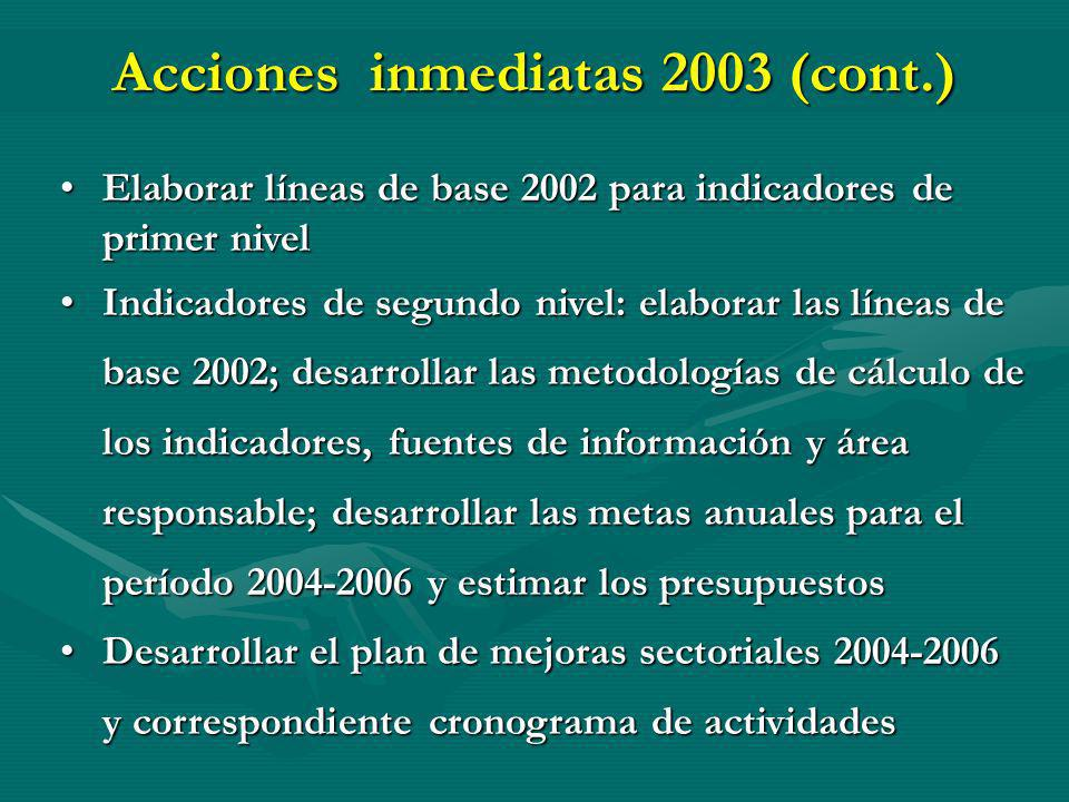 Acciones inmediatas 2003 (cont.) Elaborar líneas de base 2002 para indicadores de primer nivelElaborar líneas de base 2002 para indicadores de primer