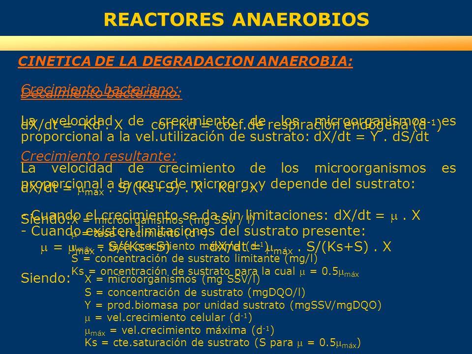 REACTORES ANAEROBIOS Crecimiento bacteriano: La velocidad de crecimiento de los microorganismos es proporcional a la vel.utilización de sustrato: dX/d