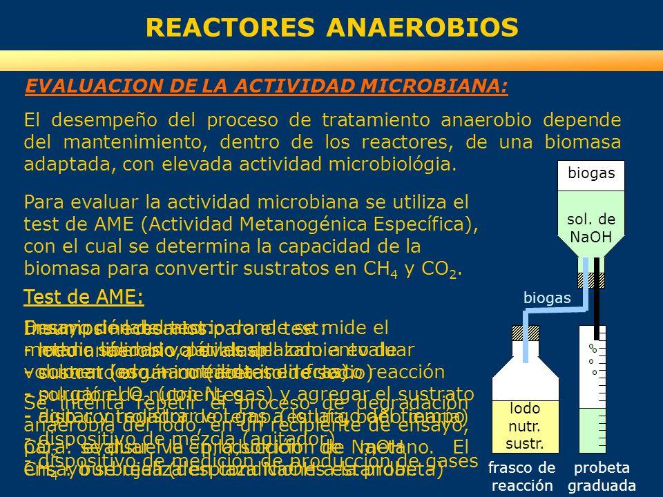 REACTORES ANAEROBIOS EVALUACION DE LA ACTIVIDAD MICROBIANA: El desempeño del proceso de tratamiento anaerobio depende del mantenimiento, dentro de los