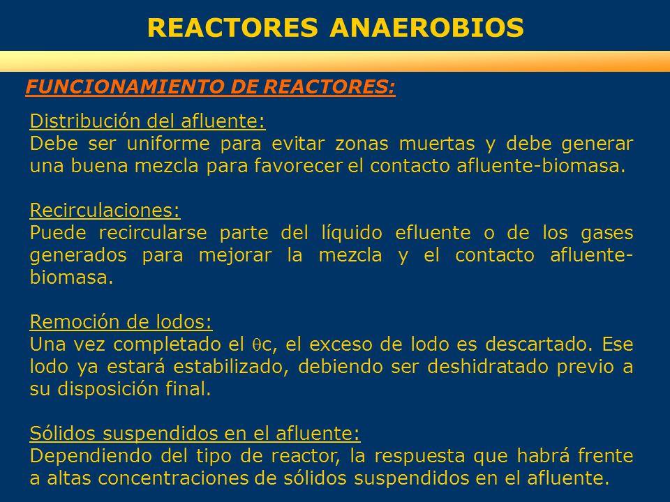REACTORES ANAEROBIOS FUNCIONAMIENTO DE REACTORES: Distribución del afluente: Debe ser uniforme para evitar zonas muertas y debe generar una buena mezc