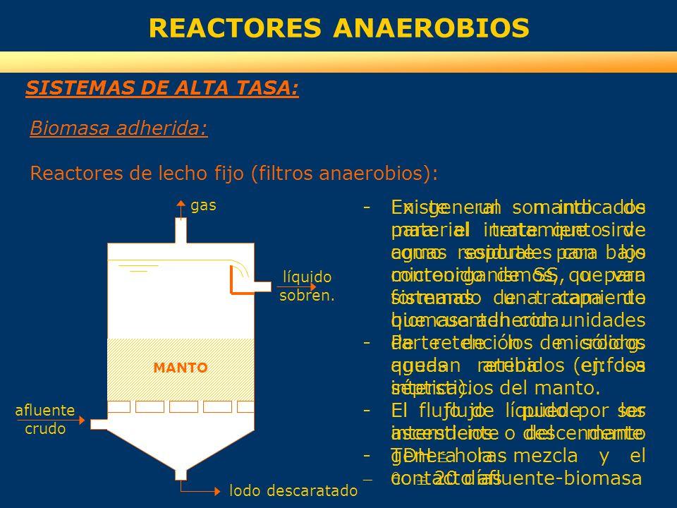 REACTORES ANAEROBIOS SISTEMAS DE ALTA TASA: Biomasa adherida: Reactores de lecho fijo (filtros anaerobios): -Existe un manto de material inerte que si