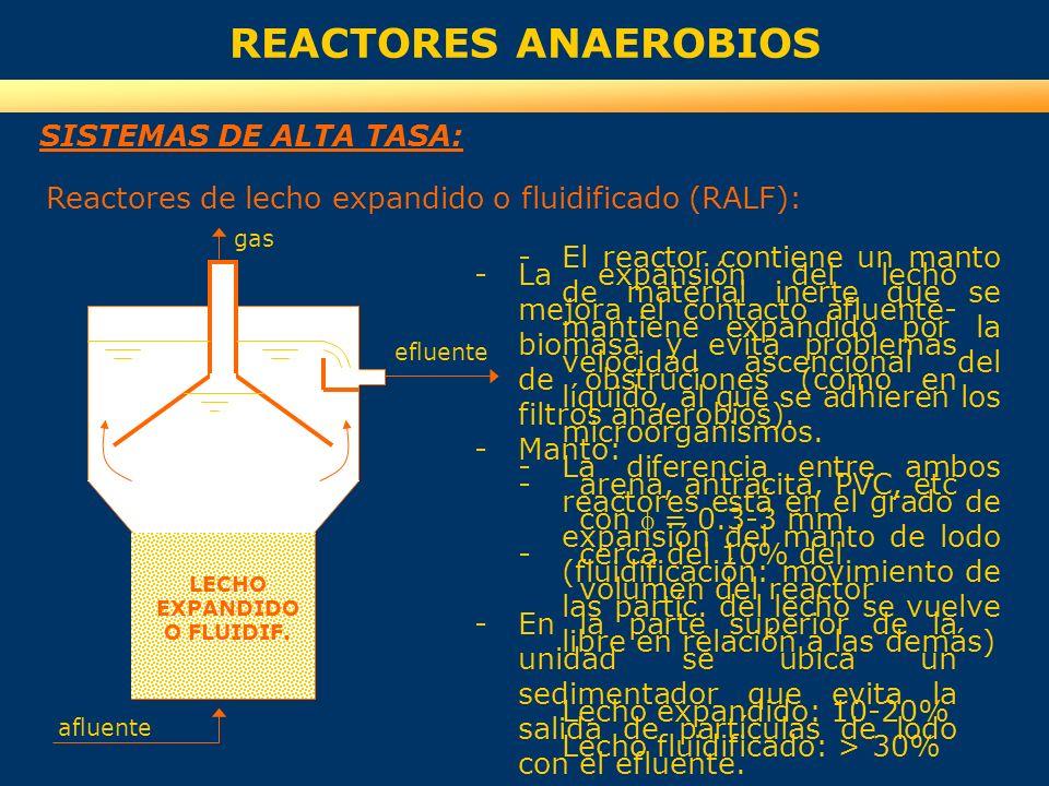 REACTORES ANAEROBIOS SISTEMAS DE ALTA TASA: -El reactor contiene un manto de material inerte que se mantiene expandido por la velocidad ascencional de