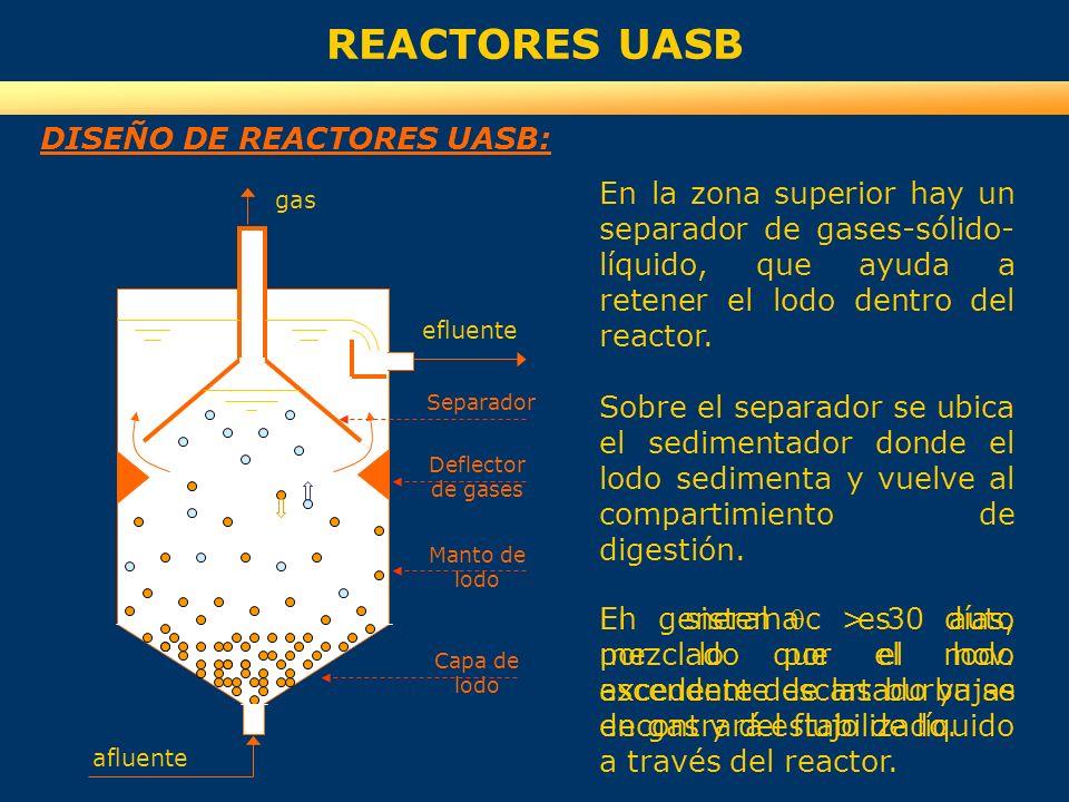 REACTORES UASB DISEÑO DE REACTORES UASB: efluente afluente gas Capa de lodo Manto de lodo Deflector de gases Separador En la zona inferior se desarrol