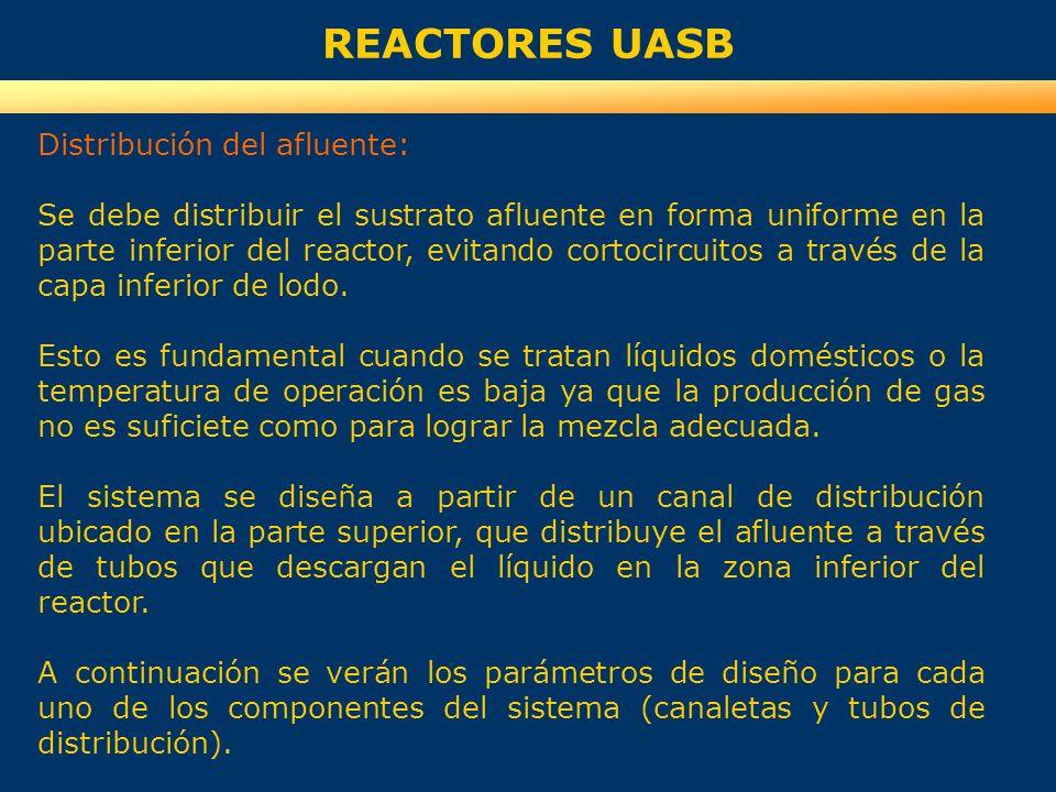 REACTORES UASB Distribución del afluente: Se debe distribuir el sustrato afluente en forma uniforme en la parte inferior del reactor, evitando cortoci