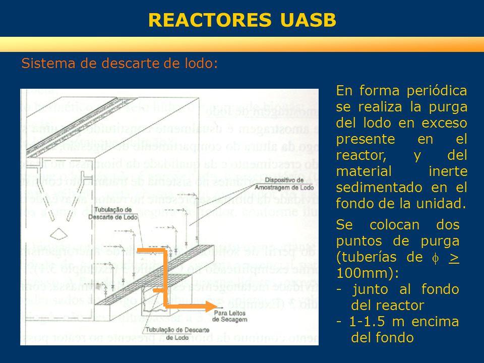 REACTORES UASB Sistema de descarte de lodo: En forma periódica se realiza la purga del lodo en exceso presente en el reactor, y del material inerte se