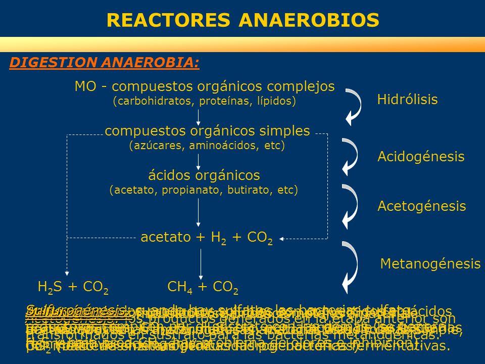 REACTORES ANAEROBIOS MO - compuestos orgánicos complejos (carbohidratos, proteínas, lípidos) Hidrólisis Acidogénesis acetato + H 2 + CO 2 CH 4 + CO 2