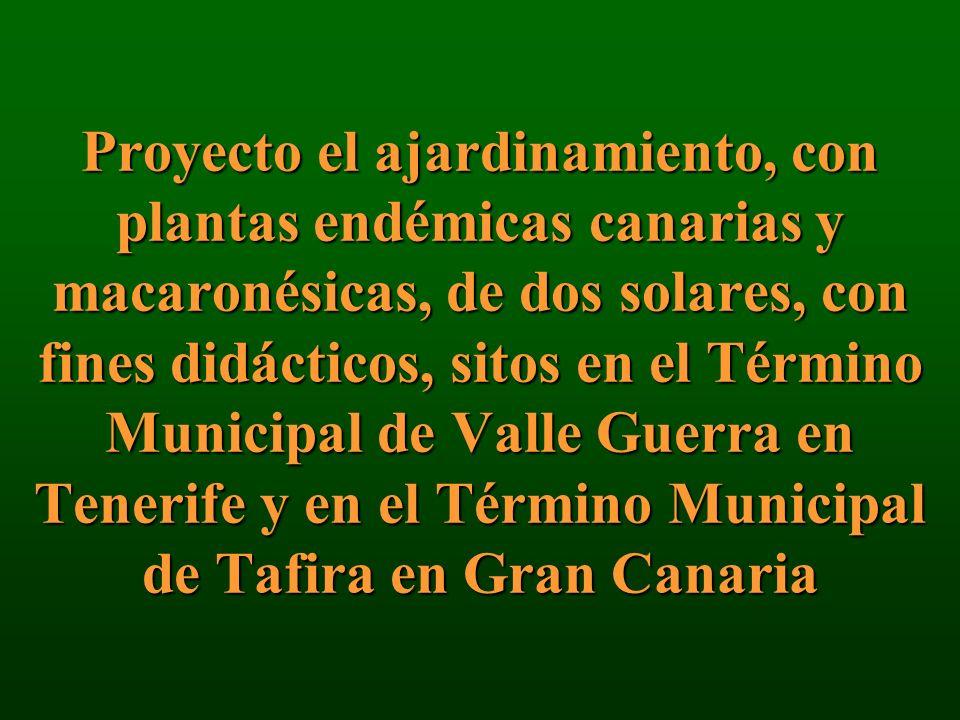 Proyecto el ajardinamiento, con plantas endémicas canarias y macaronésicas, de dos solares, con fines didácticos, sitos en el Término Municipal de Val