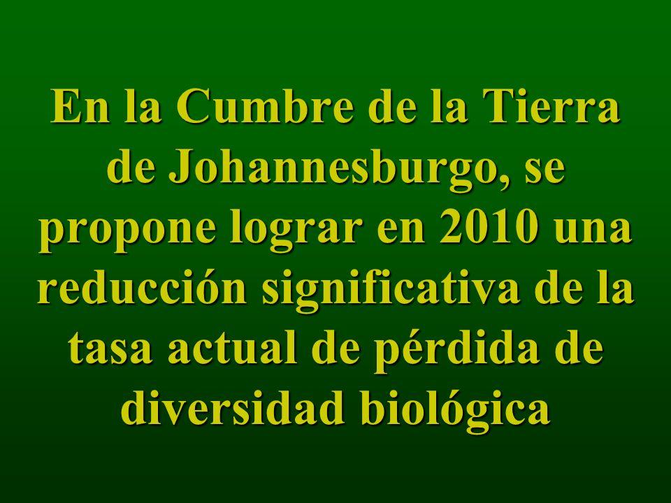 En la Cumbre de la Tierra de Johannesburgo, se propone lograr en 2010 una reducción significativa de la tasa actual de pérdida de diversidad biológica