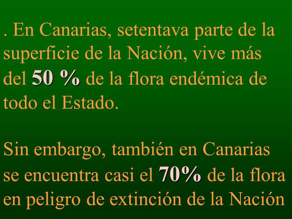 50 % 70%. En Canarias, setentava parte de la superficie de la Nación, vive más del 50 % de la flora endémica de todo el Estado. Sin embargo, también e