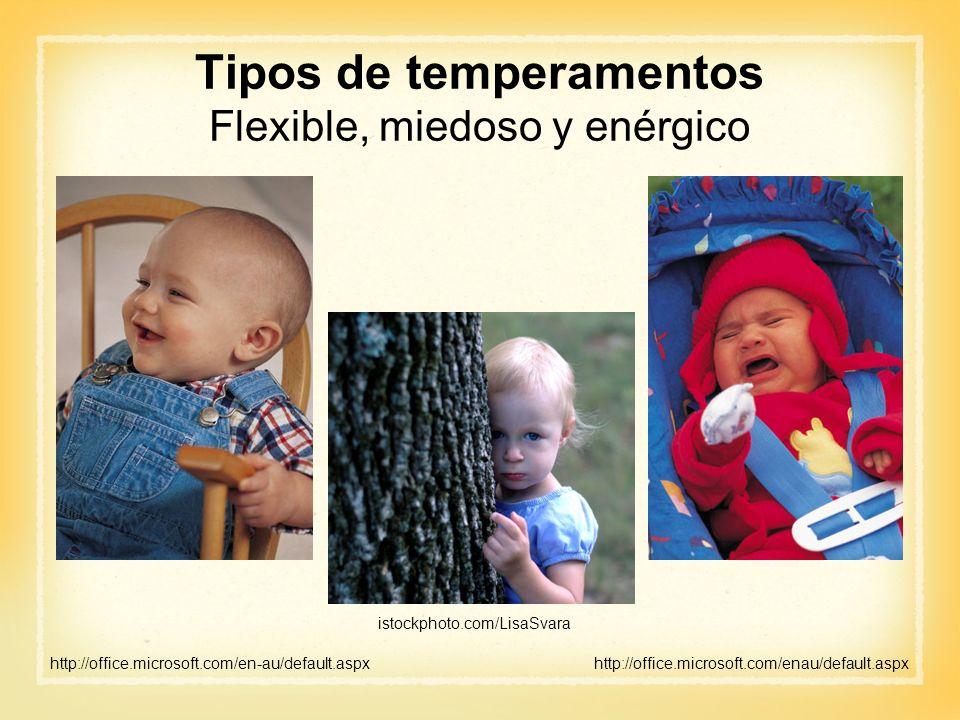 Tipos de temperamentos Flexible, miedoso y enérgico http://office.microsoft.com/en-au/default.aspx istockphoto.com/LisaSvara http://office.microsoft.c