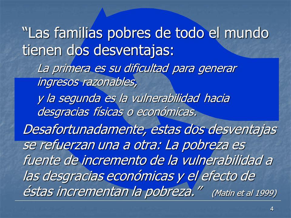 4 Las familias pobres de todo el mundo tienen dos desventajas: La primera es su dificultad para generar ingresos razonables, y la segunda es la vulner