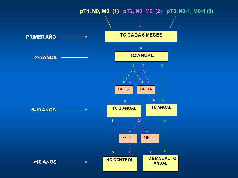 pT1, N0, M0 (1) pT2, N0, M0 (2) pT3, N0-1, M0-1 (3) PRIMER AÑO 2-5 AÑOS 1 2 3 GF 1,2GF 3,4 6-10 A Ñ OS TC BIANUAL TC ANUAL 1 2 3 GF 1,2GF 3,4 >10 A Ñ