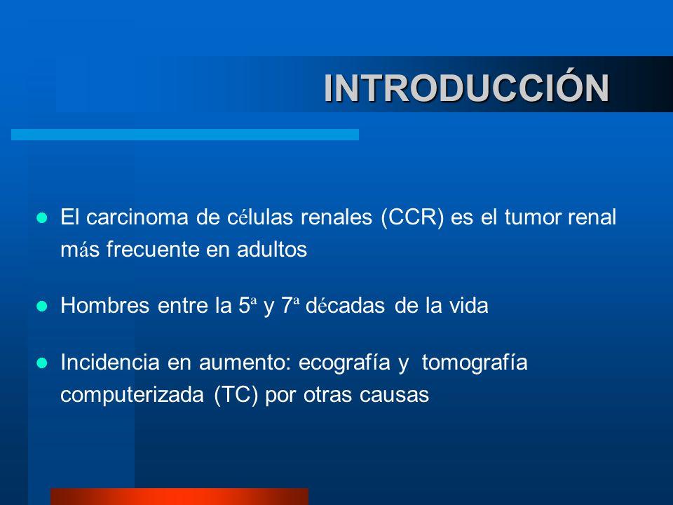 INTRODUCCIÓN INTRODUCCIÓN El carcinoma de c é lulas renales (CCR) es el tumor renal m á s frecuente en adultos Hombres entre la 5 ª y 7 ª d é cadas de