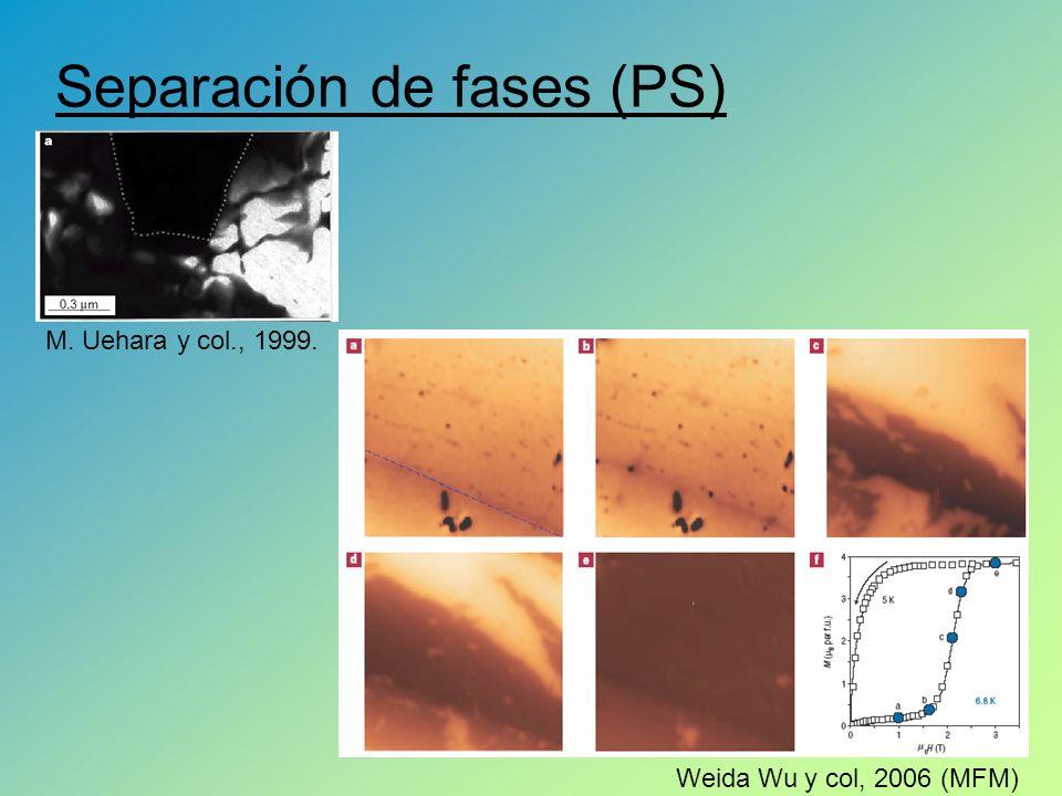 Separación de fases (PS) Weida Wu y col, 2006 (MFM) M. Uehara y col., 1999.