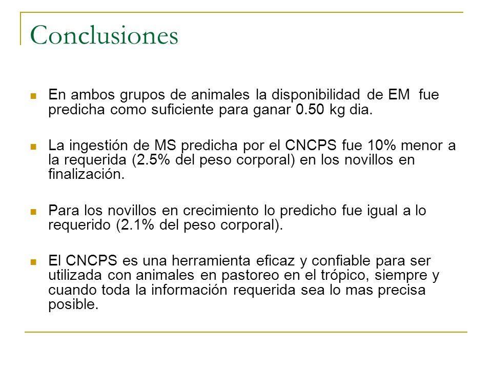 Conclusiones En ambos grupos de animales la disponibilidad de EM fue predicha como suficiente para ganar 0.50 kg dia. La ingestión de MS predicha por