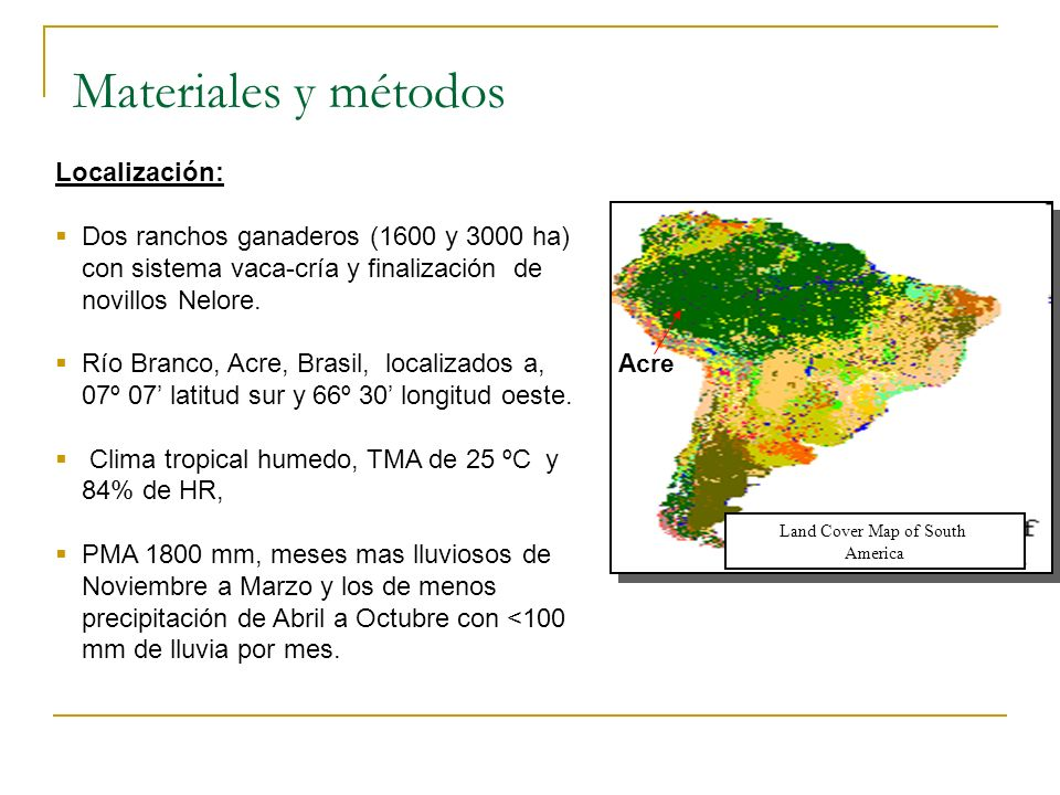 Acre Land Cover Map of South America Materiales y métodos Localización: Dos ranchos ganaderos (1600 y 3000 ha) con sistema vaca-cría y finalización de