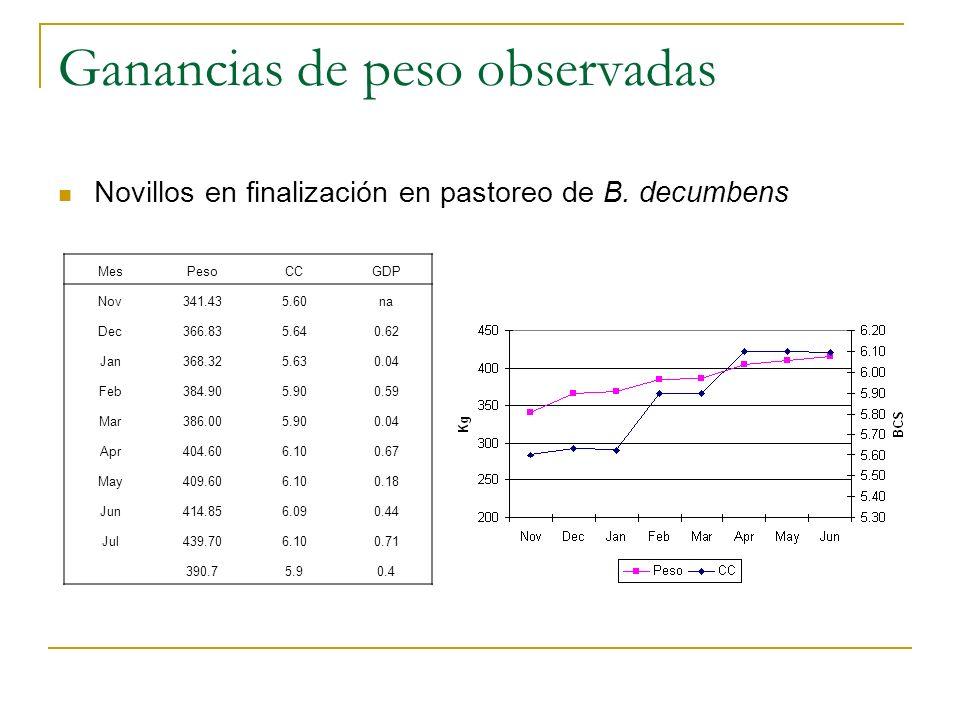 Conclusiones En ambos grupos de animales la disponibilidad de EM fue predicha como suficiente para ganar 0.50 kg dia.
