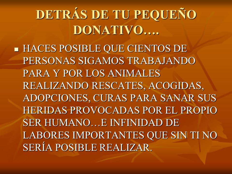 DETRÁS DE TU PEQUEÑO DONATIVO….
