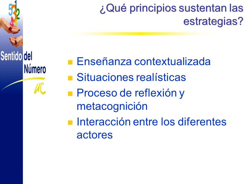 ¿Qué principios sustentan las estrategias.