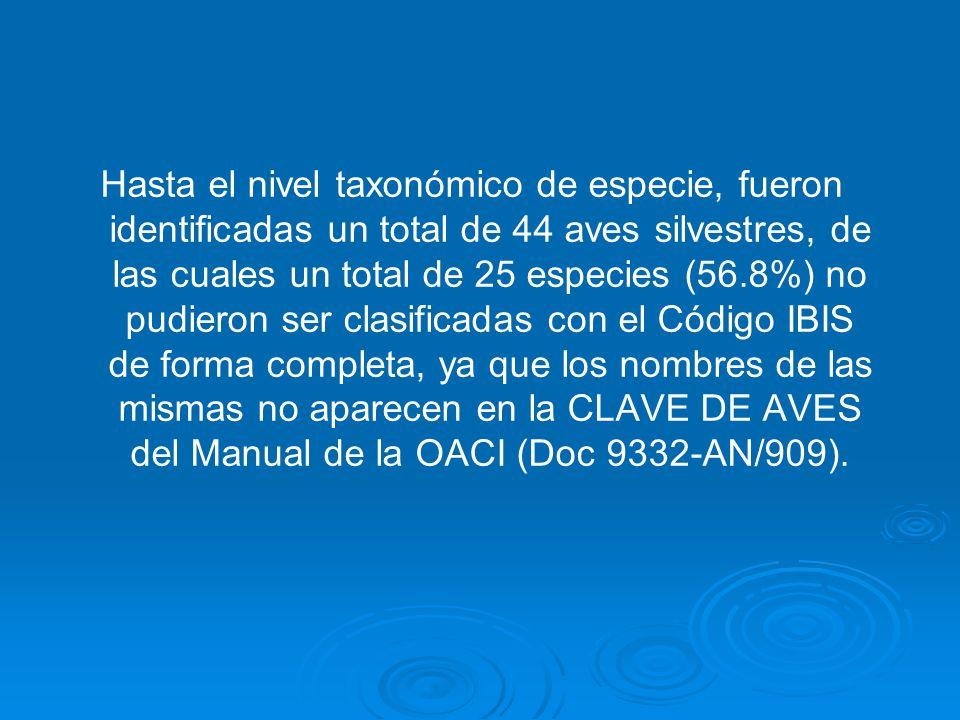 Períodos, cantidad de especies identificadas y colisiones notificadas a la OACI para el lapso comprendido entre enero de 1996 a diciembre 2003 Período