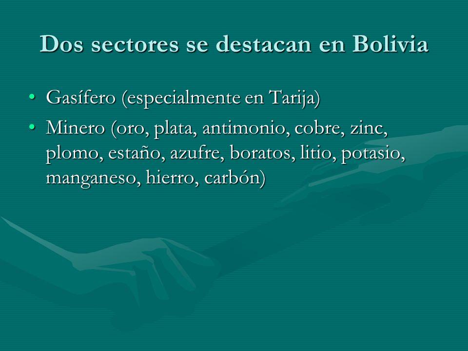 Dos sectores se destacan en Bolivia Gasífero (especialmente en Tarija)Gasífero (especialmente en Tarija) Minero (oro, plata, antimonio, cobre, zinc, plomo, estaño, azufre, boratos, litio, potasio, manganeso, hierro, carbón)Minero (oro, plata, antimonio, cobre, zinc, plomo, estaño, azufre, boratos, litio, potasio, manganeso, hierro, carbón)