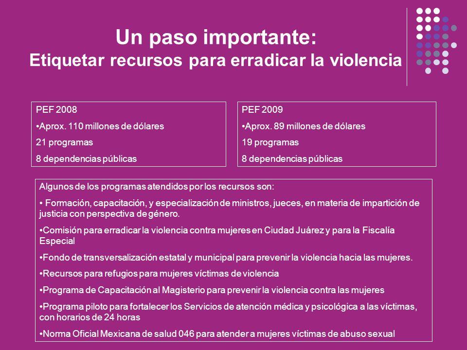 Un paso importante: Etiquetar recursos para erradicar la violencia PEF 2008 Aprox. 110 millones de dólares 21 programas 8 dependencias públicas PEF 20